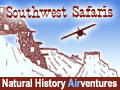 New Mexico Santa Fe SouthwestSafaris-button