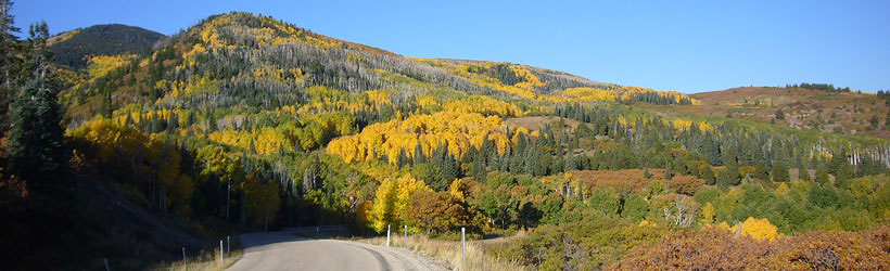 Fall in the Abajo Mountains