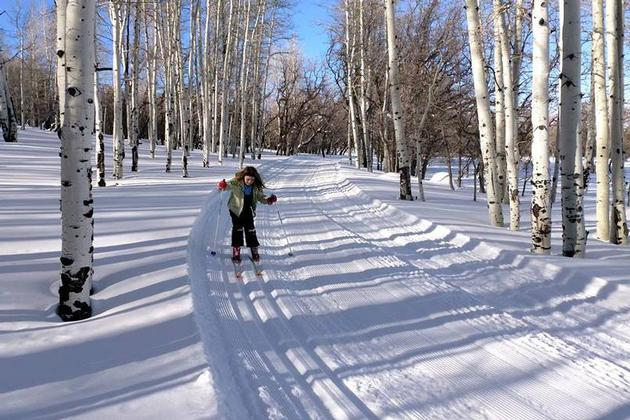Skiing in the Abajo Mountains