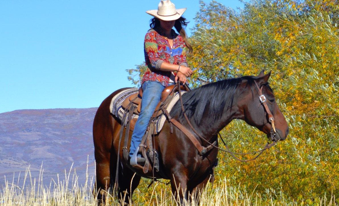High Country Adventure - Raft n' Reins