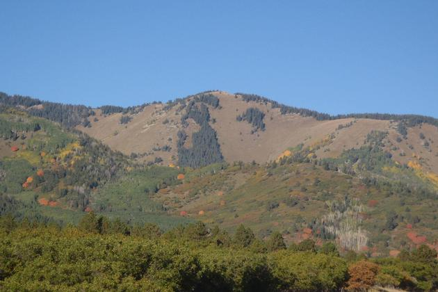 Beautiful colors of the Abajo Mountains