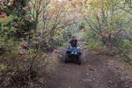 ATV riding on Loveland Lane