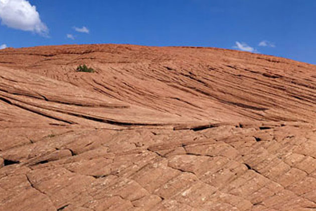 Petrified Dunes in Snow Canyon