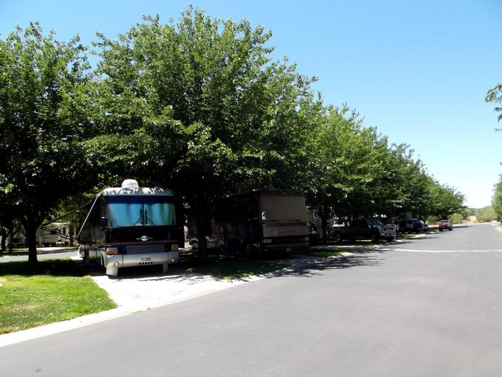 Camping Rv Parks Campgrounds Pine Valley Mtns Utah