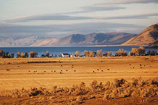 Bear Lake Farmland