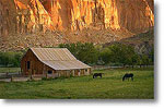Capitol Reef Farmhouse