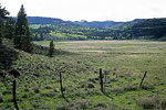 Panguitch Meadow