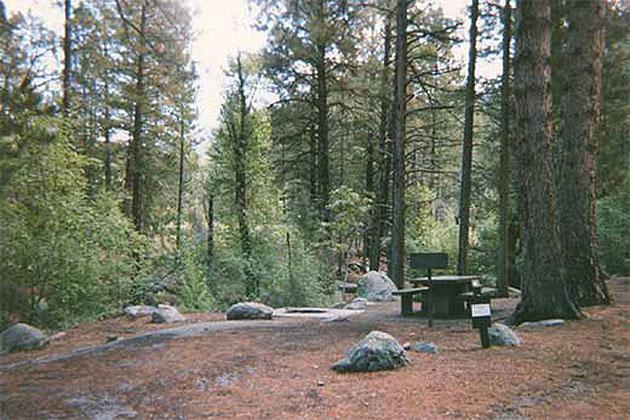 Pine Valley Campground