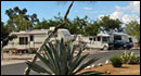 Adventure Bound Camping Resorts - Cactus Country