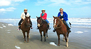 Horses On The Beach - Corpus Christi